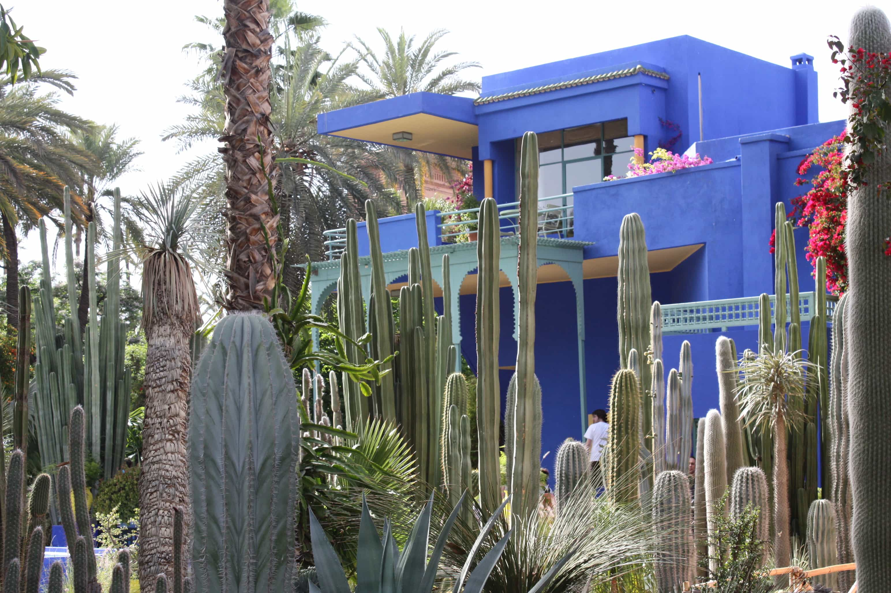 Marjorelle blue house
